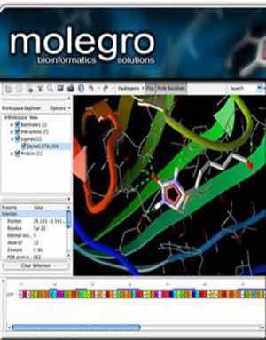 Download Molegro Virtual Docker v4.2.0 Linux